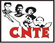 CNTE-1-1